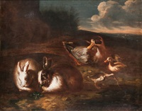rabbits and ducks by giovanni agostino (abate) cassana