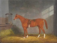 bay horse in a stable by james (of bath) loder