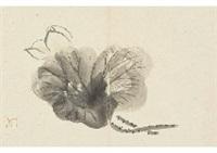 lotus by gyokudo kawai
