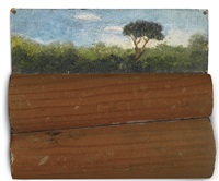 tikal - guatemala by francis alÿs
