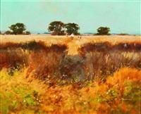 barley fields, bedford by john haskins