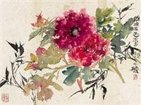 牡丹 by cheng shifa