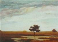 landscape by heinz dodenhoff