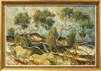 kustlandskap med träd by martin emond