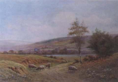 sheep grazing in rolling landscape by george oyston
