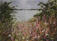 paterswoldse meer, groningen by cor van loenen