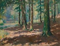 forêt de soignes à boitsfort by jules postel