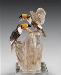 toucan pair by peter muller