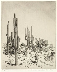 road to apache reservation, arizona by george elbert burr
