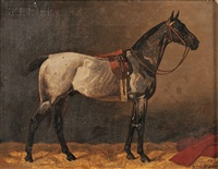 portrait of a gray horse in a stable by emil volkers