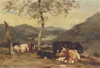 cattle resting under a tree by andrew douglas