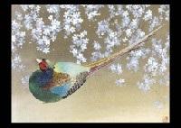night with cherry blossoms by junichi goto