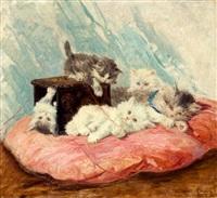 vijf katjes spelend op rood kussen by henriette ronner-knip
