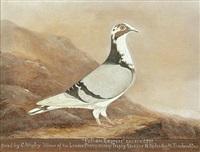 Racing pigeons (studies; 3 works), 1931