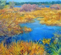alberta marsh by helen rogak