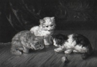 kittens at play by f. krantz
