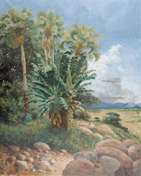 afrikanische landschaft by paul reichard