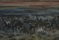 zebra and wildebeest at dusk by gordon vorster