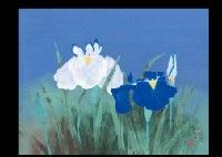 calamus flowers by oya toshihiko