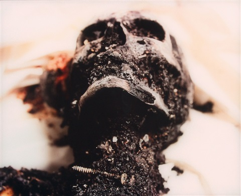 burnt to death from the morgue by andres serrano