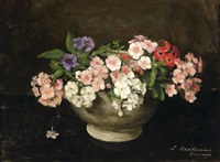 phlox in a vase by liekie arntzenius doorman