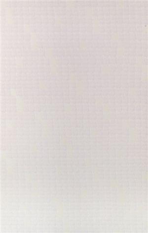 Ohne Titel Weisses Bild By Rolf Gunter Dienst On Artnet