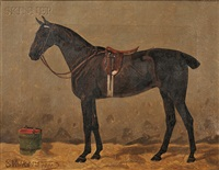 portrait of a bay horse in a stable by emil volkers