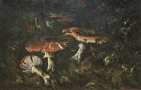 mushrooms by theo goedvriend