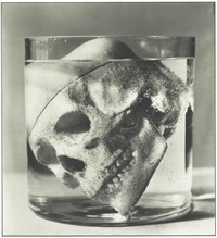 skull in glass by stephane graff