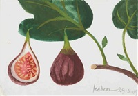 figs on a branch by mary fedden