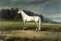 horse portrait by augustus langwig