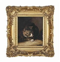 a tabby cat by horatio henry couldery