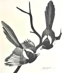 magpies by tony angell