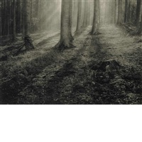 untitled, landscape by léonard misonne