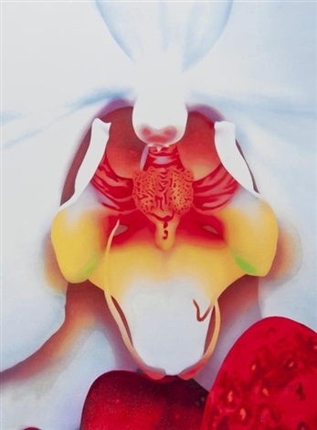 untitled 2 (from portraits of landscapes) by marc quinn