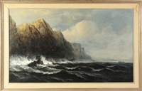 the rocky coast by james hamilton
