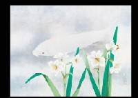 spring by seitoku igarashi