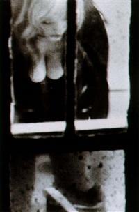 the window by merry alpern