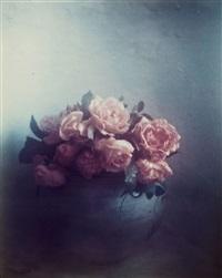 roses, st tropez by david hamilton