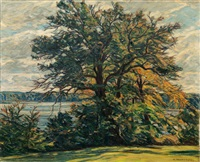 lakes in mecklenburg by karl hennemann