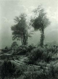 paysage de campine aux deux arbres by léonard misonne