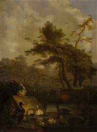 waterbirds in a wooded landscape (2 works) by jan augustini