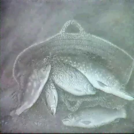 fischstilleben by thomas philip weddell grantham