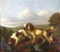 spaniels hunting in a landscape by adriaen beeldemaker