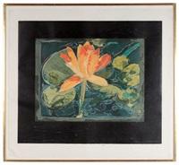 matthews lily by joseph raffael