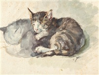 schlafende katze by julius adam the younger