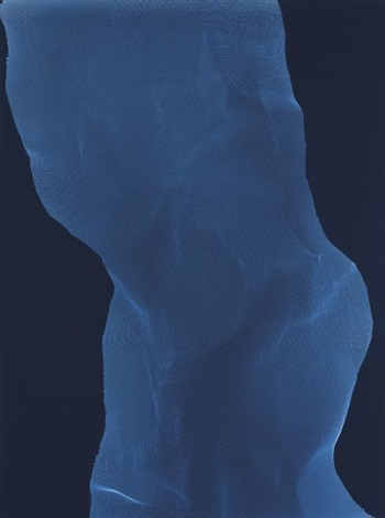 torso 6 by james welling