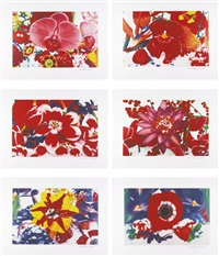 six moments of sunrise (6 works) by marc quinn