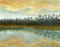 twighlight in the swamp by hattie saussy