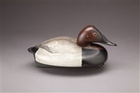canvasback drake by ferdinand bach